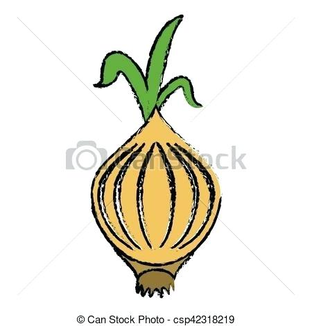 450x470 Drawing Of An Onion Onion Drawing Out Toxins