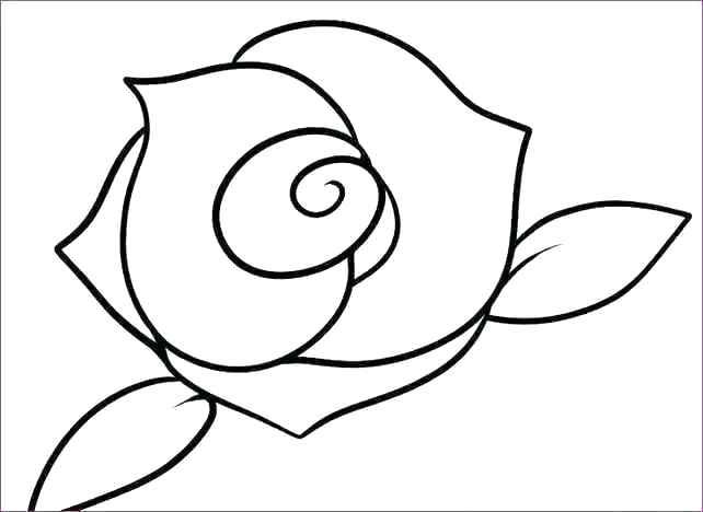642x468 pretty flowers drawings fresh pretty drawings of flowers or pretty