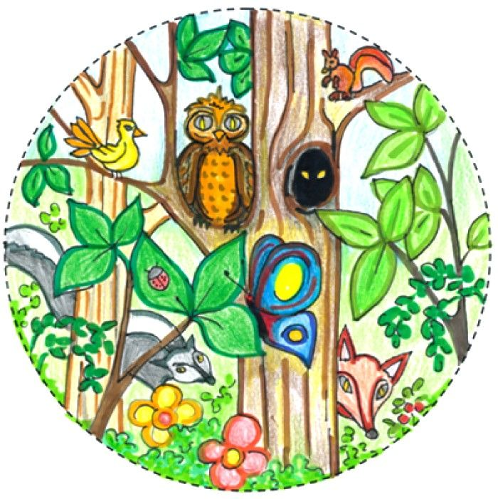 700x701 Biodiversity Drawing Competition Ideas For Kids Rutva