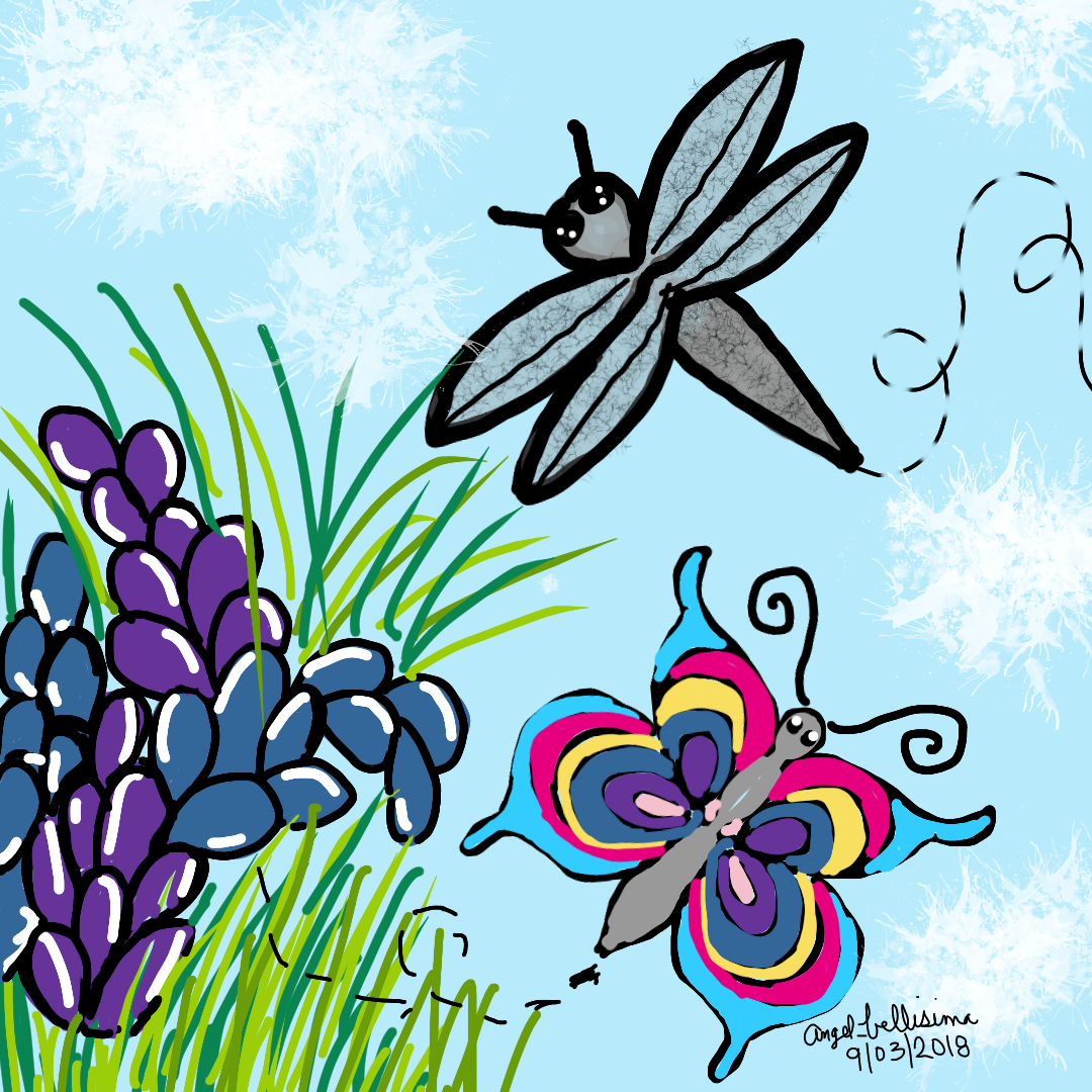 1080x1080 nature flowers butterfly dragonfly nature drawing art