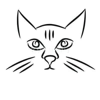 400x400 cat face drawing cat face cat face drawing easy step