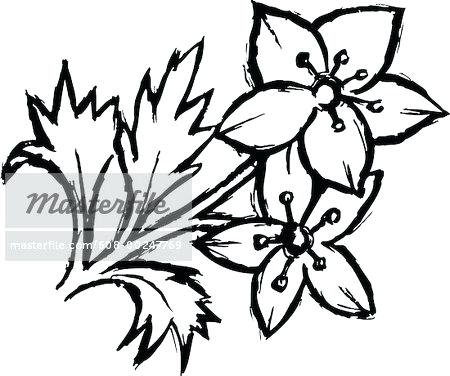450x376 Easy Flower To Draw Easy Flower Drawings In Black And White