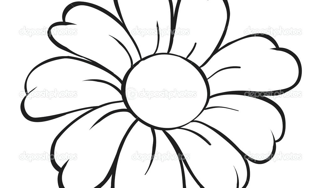 1024x600 Flower Drawing Easy Pencil Drawings Of Flowers Easy Flower Drawing
