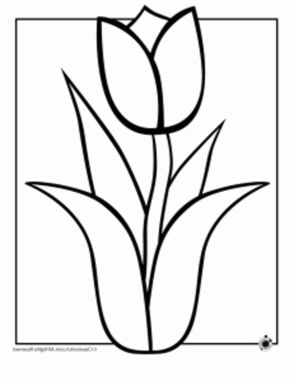 1000x1298 Flowers Drawing Easy Images