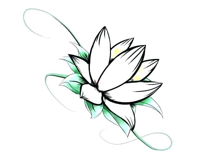 728x546 Draw Simple Flowers