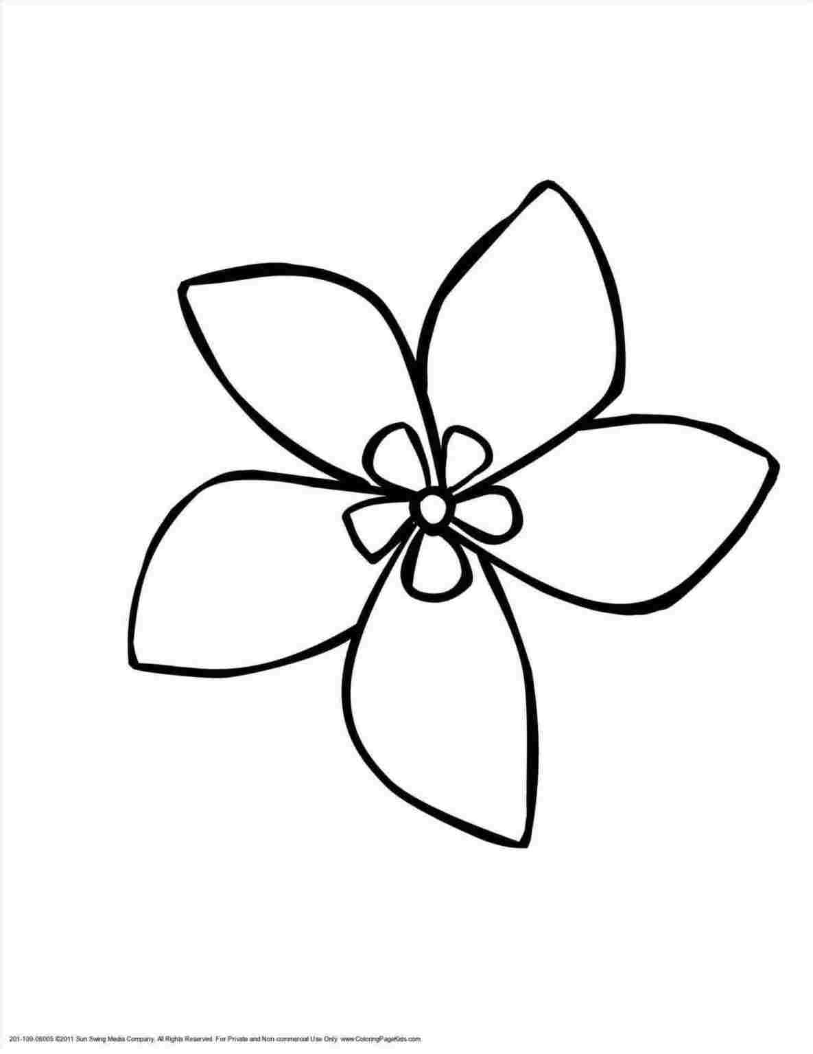 Drawing Pictures Of Flowers That Are Easy Free Download