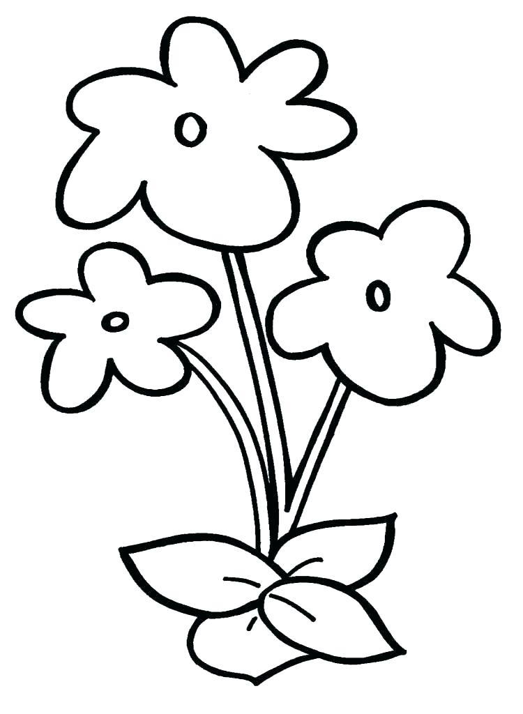 750x1024 Simple Easy Flowers To Draw