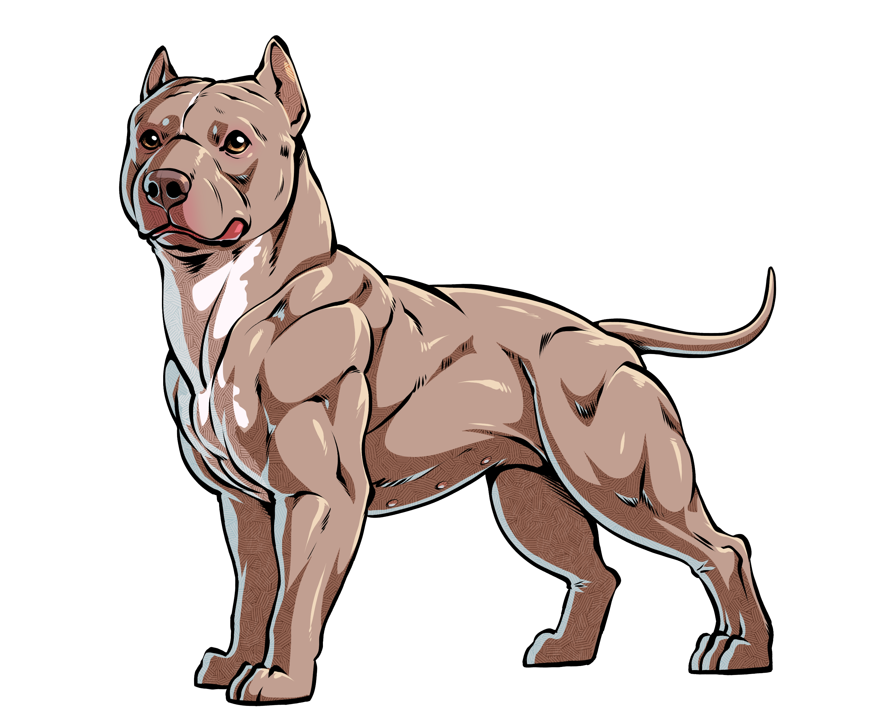 2880x2348 Collection Of Free Pitbull Drawing Muscle Download On Ui Ex