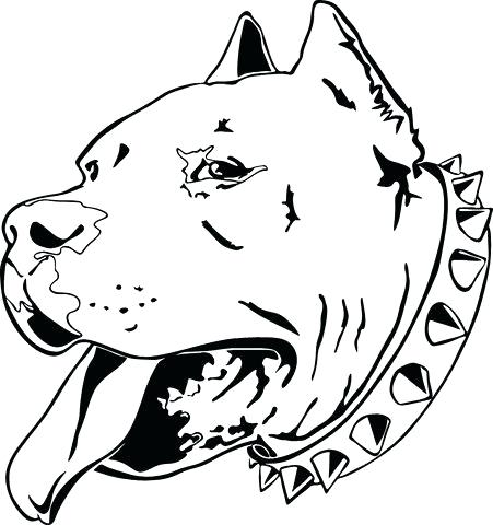 451x480 drawings of pit bulls heads pit bull terrier head stylized vector