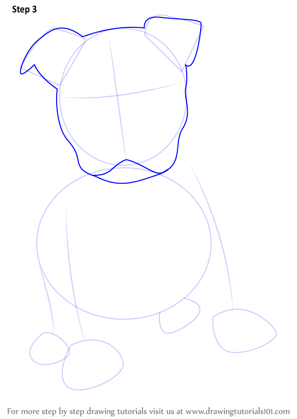 598x844 Learn How To Draw A Pitbull Puppy