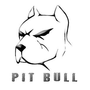307x307 Pitbull Drawings