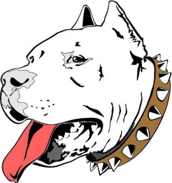 589x626 Pitbull Head Drawing Icon Vector Tattoo Idea And Designs