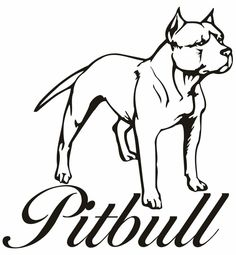 236x255 best pitbull images drawings, pitbull drawing, animales