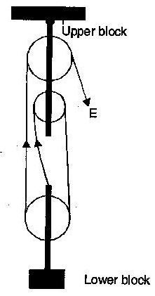 221x421 a block and tackle pulley system has a velocity ratio i draw
