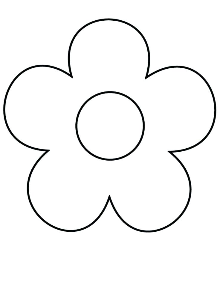 736x981 Drawing Flower Rose How To Draw Flowers Step