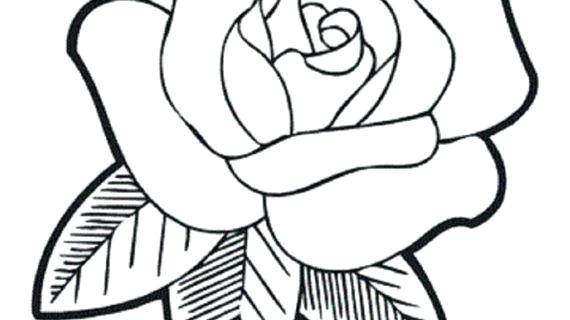570x320 Flower Drawing For Kids Flowers Outline Coloring Pages