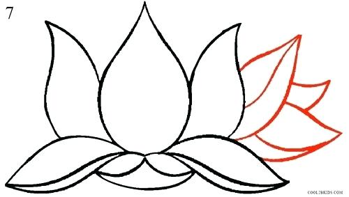 500x283 drawing lotus flower flower drawing lotus draw lotus flower tattoo