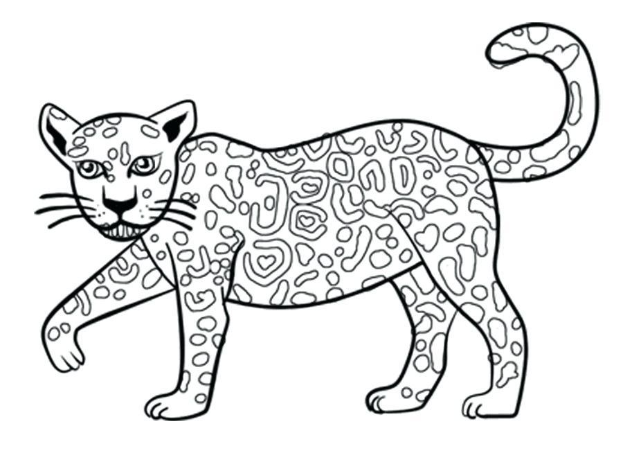 900x680 jaguar drawing jaguar hand drawing sketch vector jaguar animal