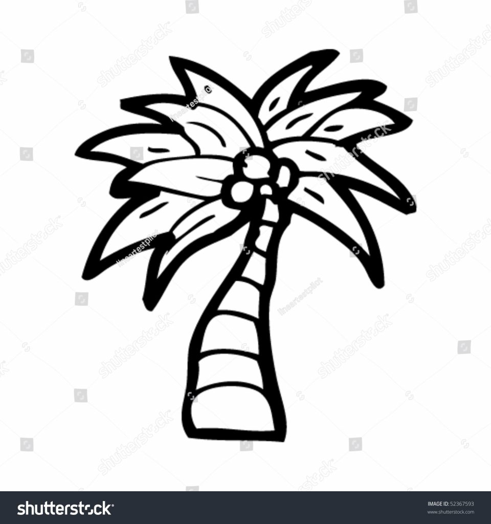 960x1024 Obsession Drawing Of A Palm Tree Quirky Coconut Stock Vector