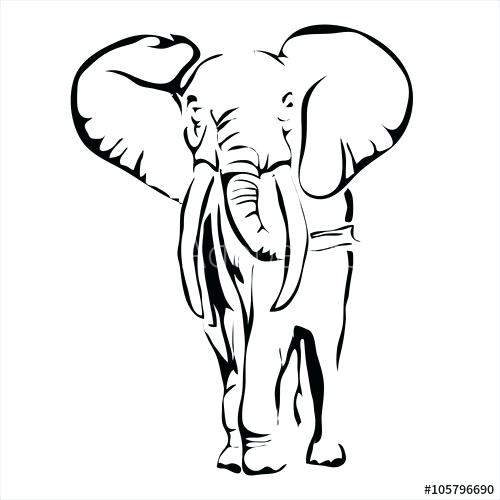 500x500 outline of elephant elephant face outline elephant vector outline