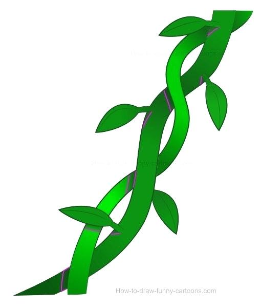 510x600 drawings of vines plant vines drawings