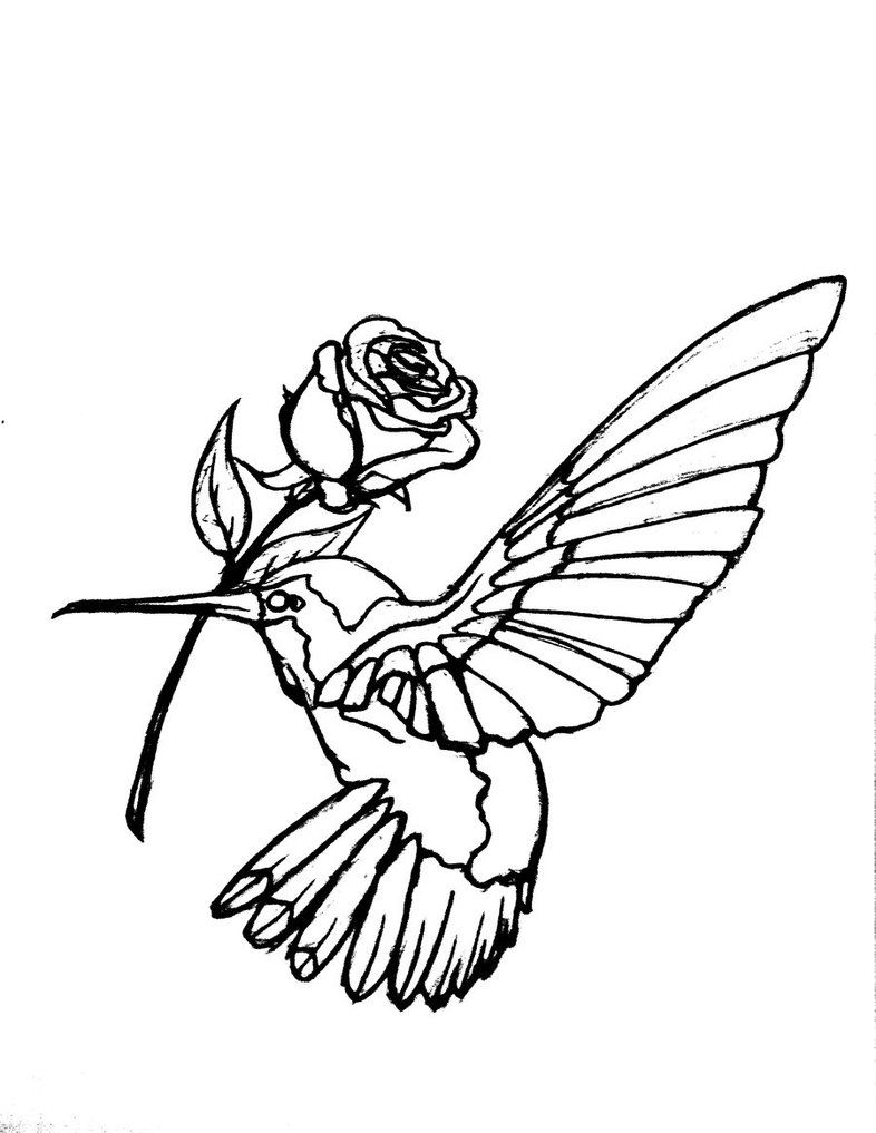 786x1017 hummingbird flower tattoo tattoos of hummingbirds hummingbird