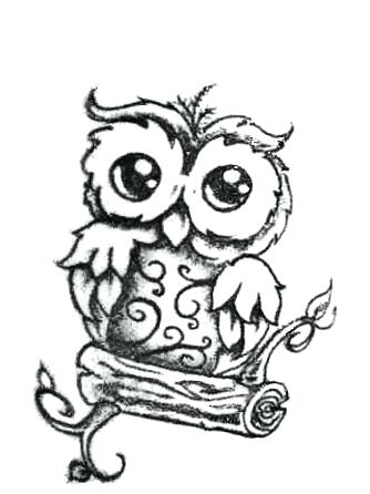 334x446 how to draw owls cute owl cute owl drawing cute drawings white owl