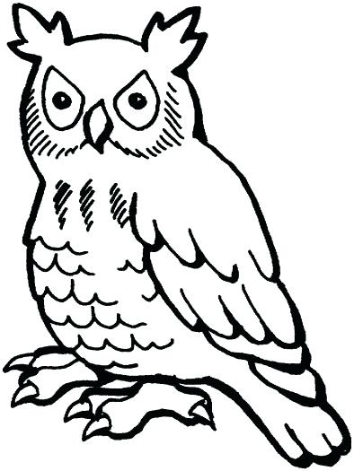 394x525 owl outline drawing owl outline library simple owl outline drawing