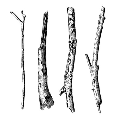 450x450 Hand Drawn Wood Twig Set, Ink Rustic Design Elements Collection
