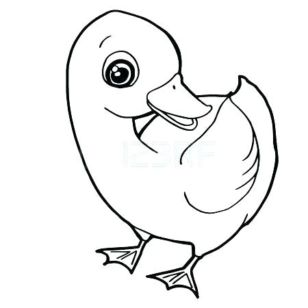 450x450 Cute Duck Coloring Pages Colouring Unique Beautiful How To Draw