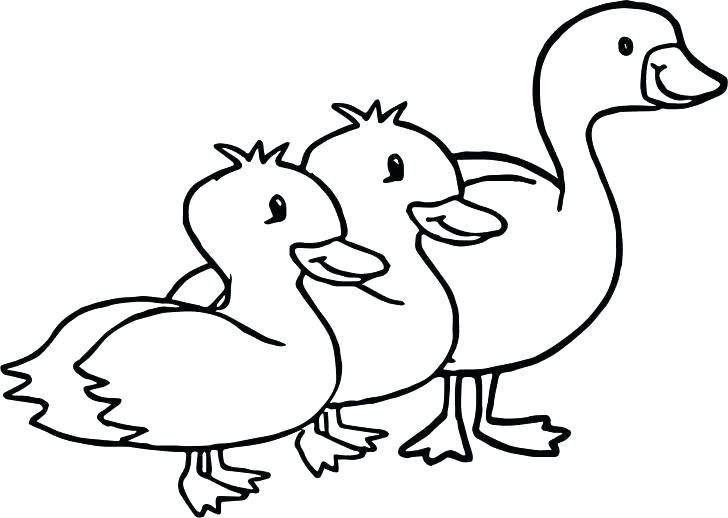 728x518 Coloring Pages For Kids Summer Girls Disney Zombies Baby Duck