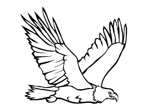 Eagle And Flag Drawing
