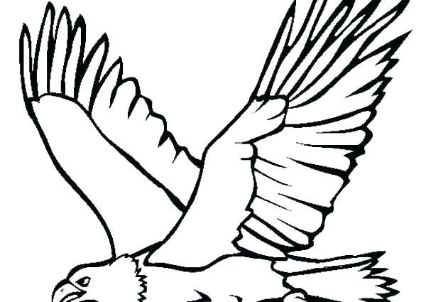 600x425 free art print of flying bald eagle flying bald eagle black free