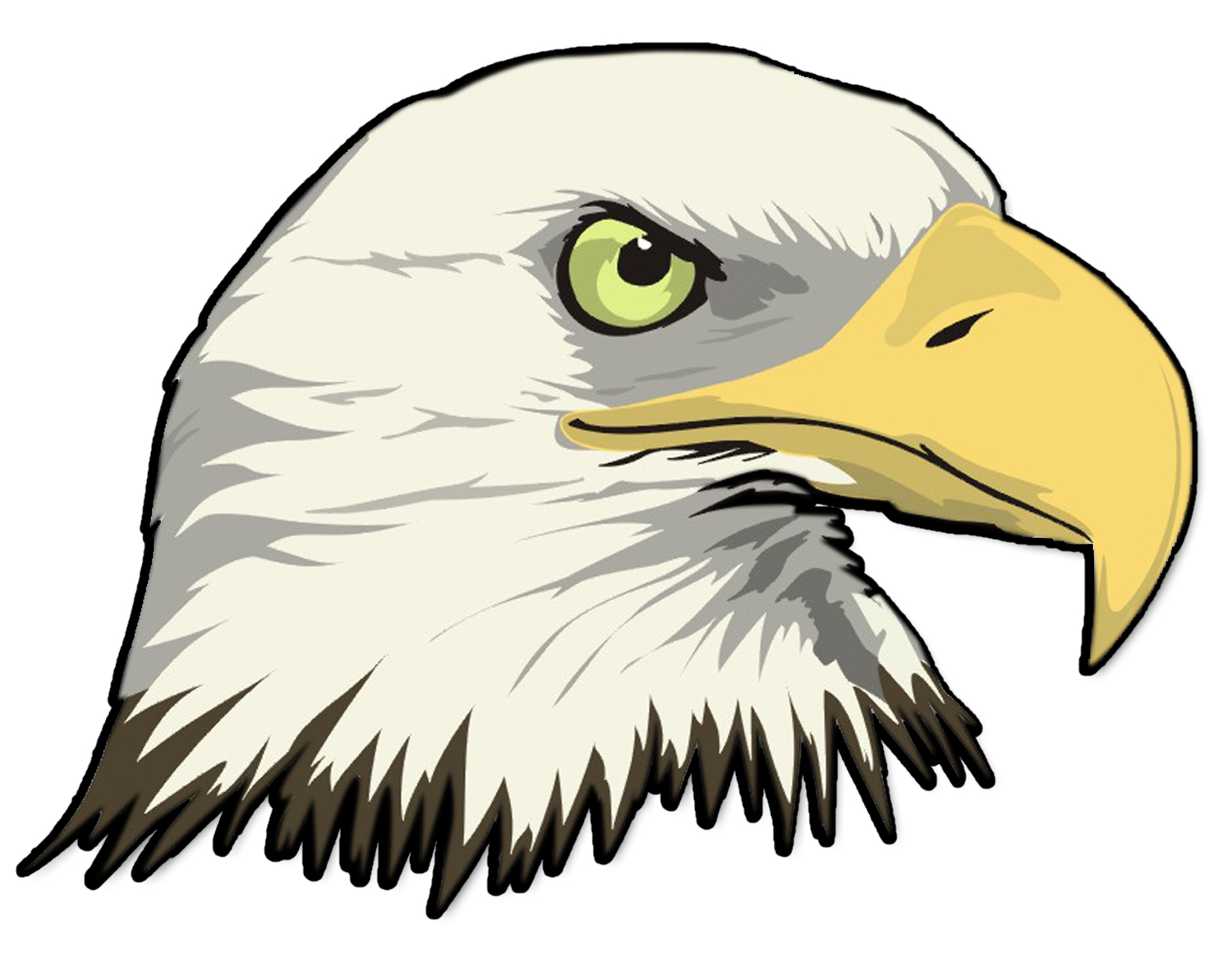 1500x1182 eagle head clipart cartoon bald eagle head drawing