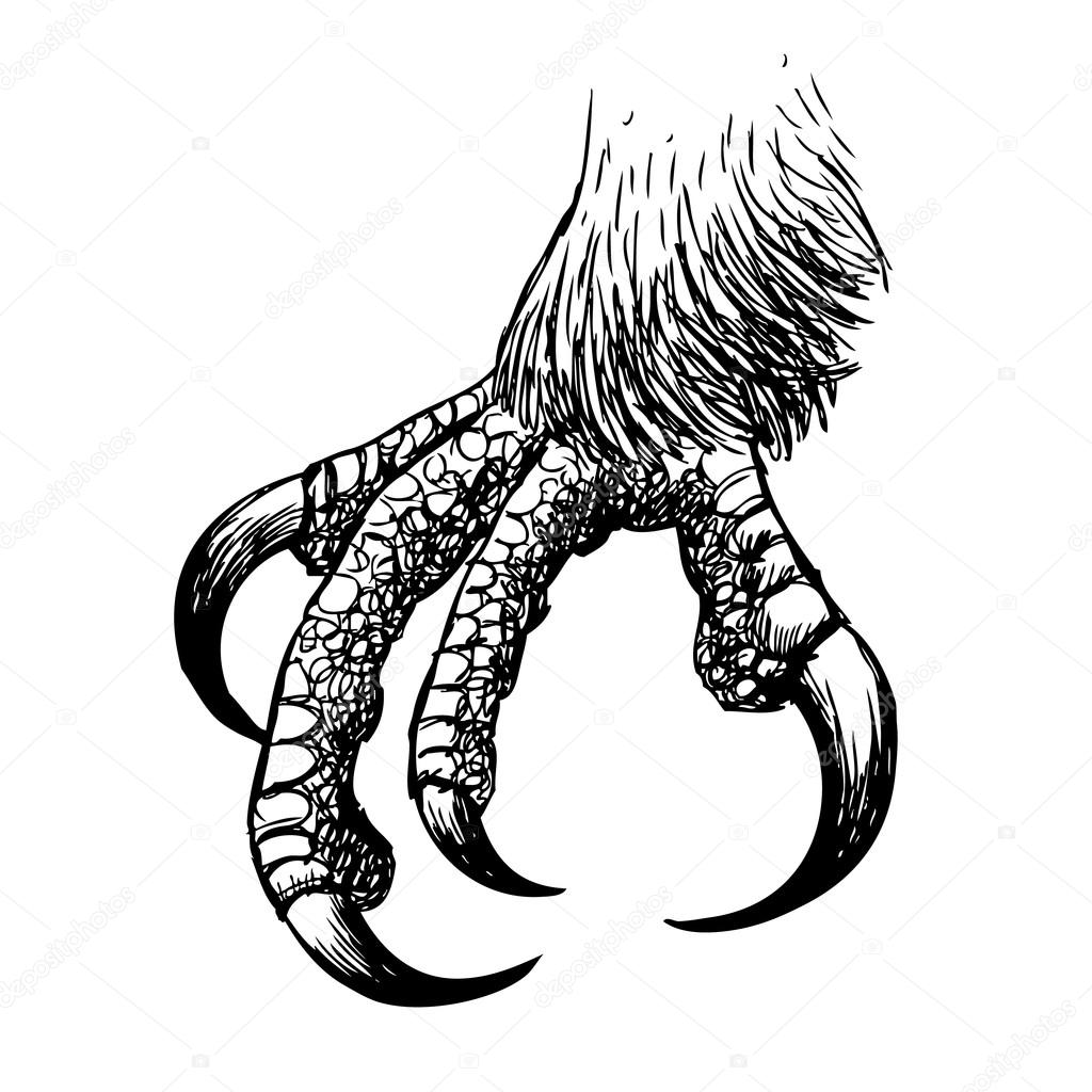 Eagle Claws Drawing