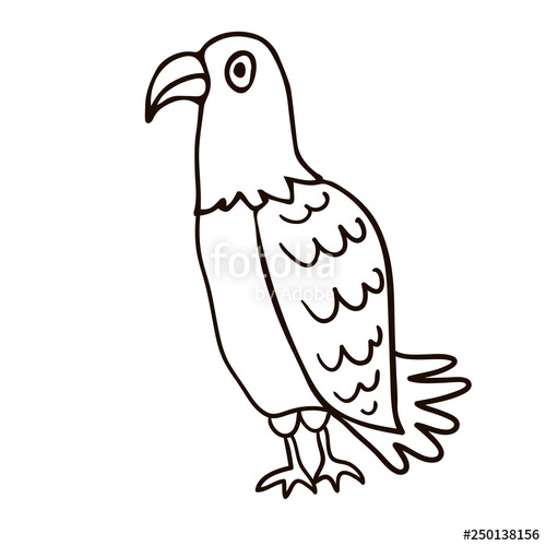 500x500 Cartoon Doodle Linear Eagle Isolated On White Background Vector