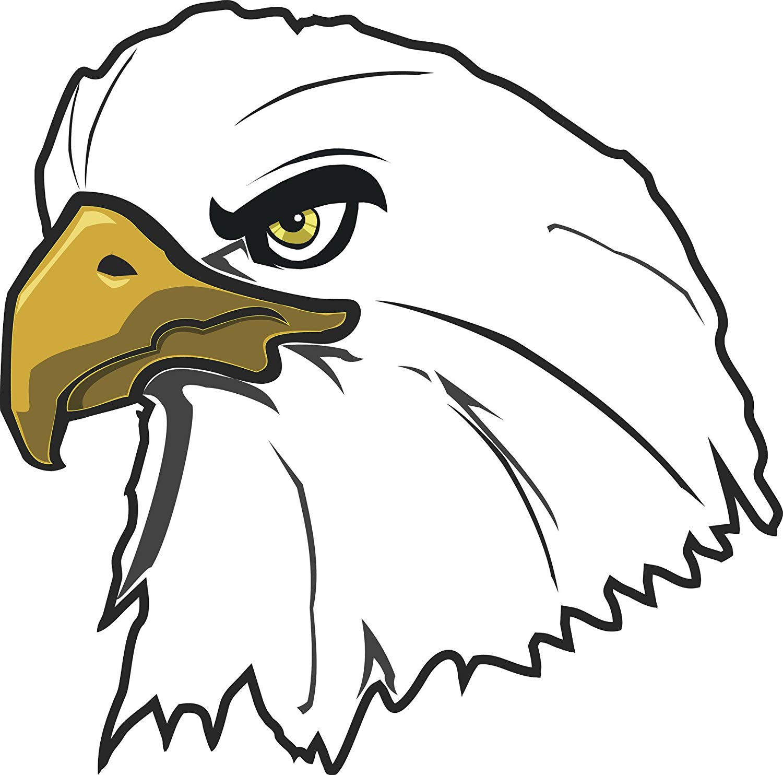 1500x1484 Simple American Bald Eagle Head Cartoon Pen Art Vinyl