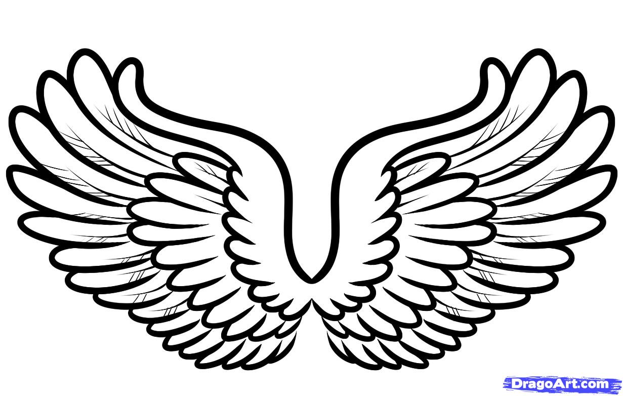 1231x782 How To Draw Cartoon Wings, Step