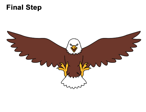 500x386 How To Draw A Bald Eagle