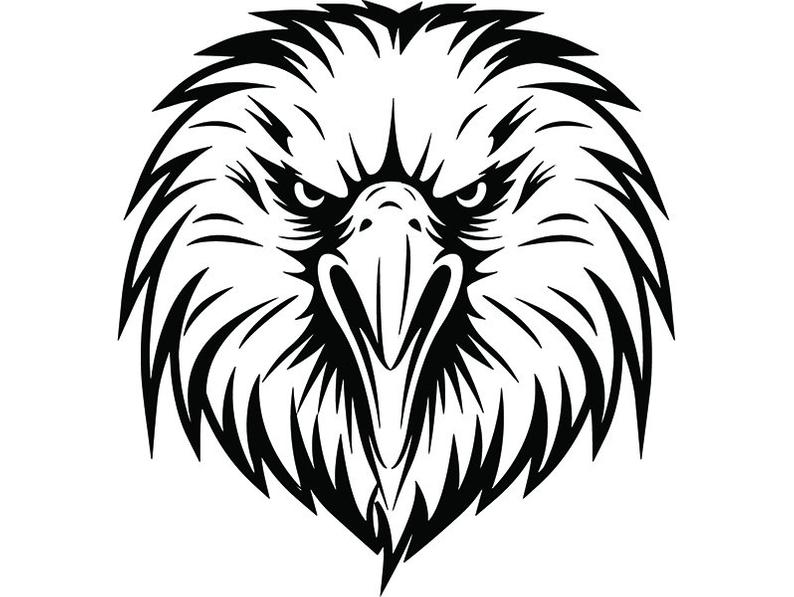 794x597 Bald Eagle American Bird Head Face Cartoon College High Etsy