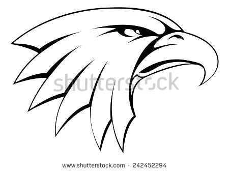 450x336 Bald Eagle Drawing Step