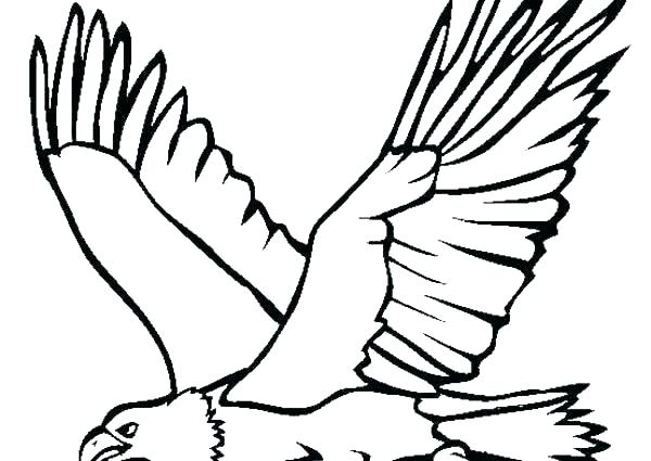 600x425 Bald Eagle Head From Side View With Crisp Outline And Flying Cartoon