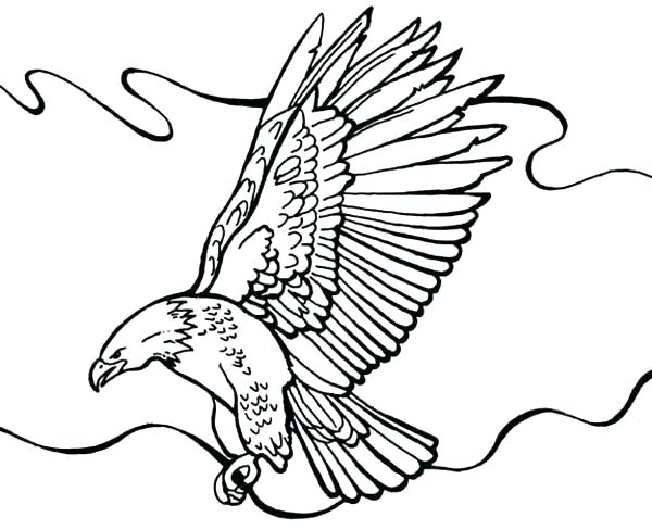 600x488 Coloring Pages Of Bald Eagles Bald Eagle Coloring Pages Bald Eagle