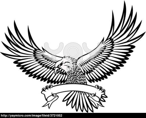 512x413 Cool Eagle Drawings Hawk, Eagle, Air, American, Animal, Attack