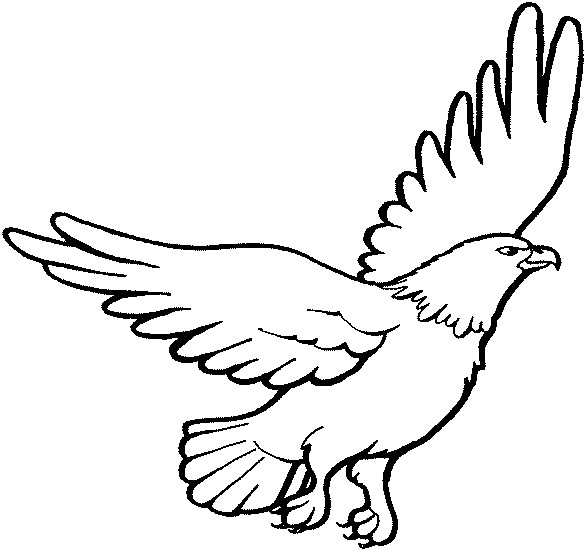 585x550 Eagle Coloring Pages Elegant For Clipart Best Logo