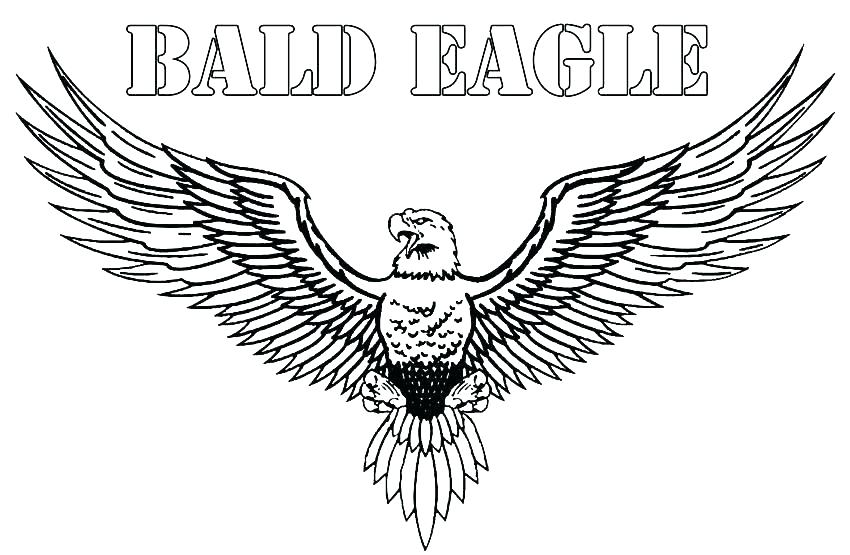 850x555 Eagles Coloring Pages Eagles Color Pages S Eagles Color Pages