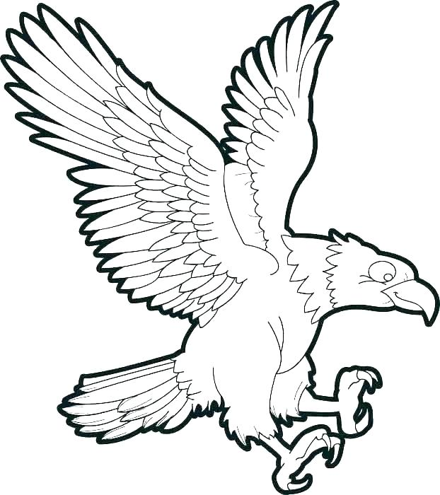 622x700 Eagles Coloring Pages Falcons Logo