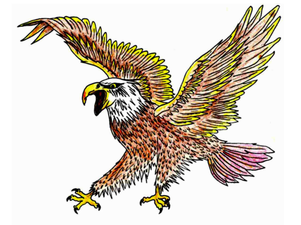 1280x960 Multi Color Mad Eagle Tattoo Design Tattoo Ideas