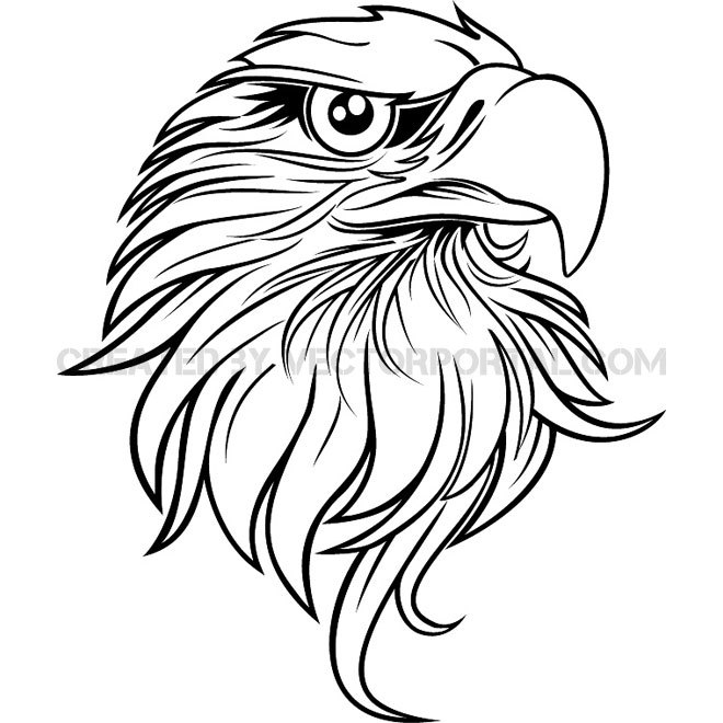 660x660 Simple Eagle Drawing Free Vector