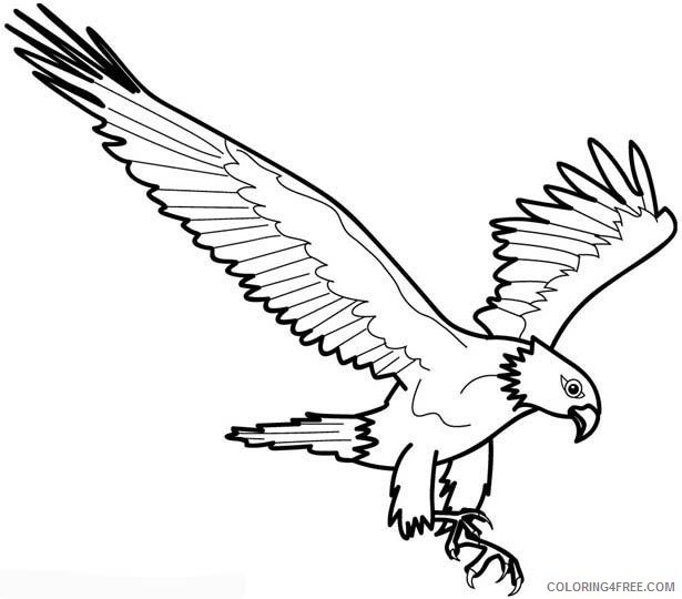 615x540 Eagle Coloring Pages Pouncing